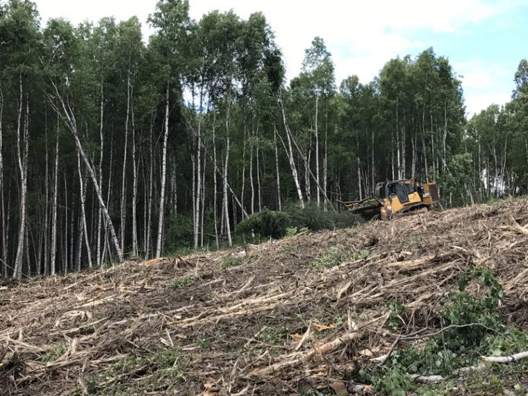 Earthworks and Land Clearing